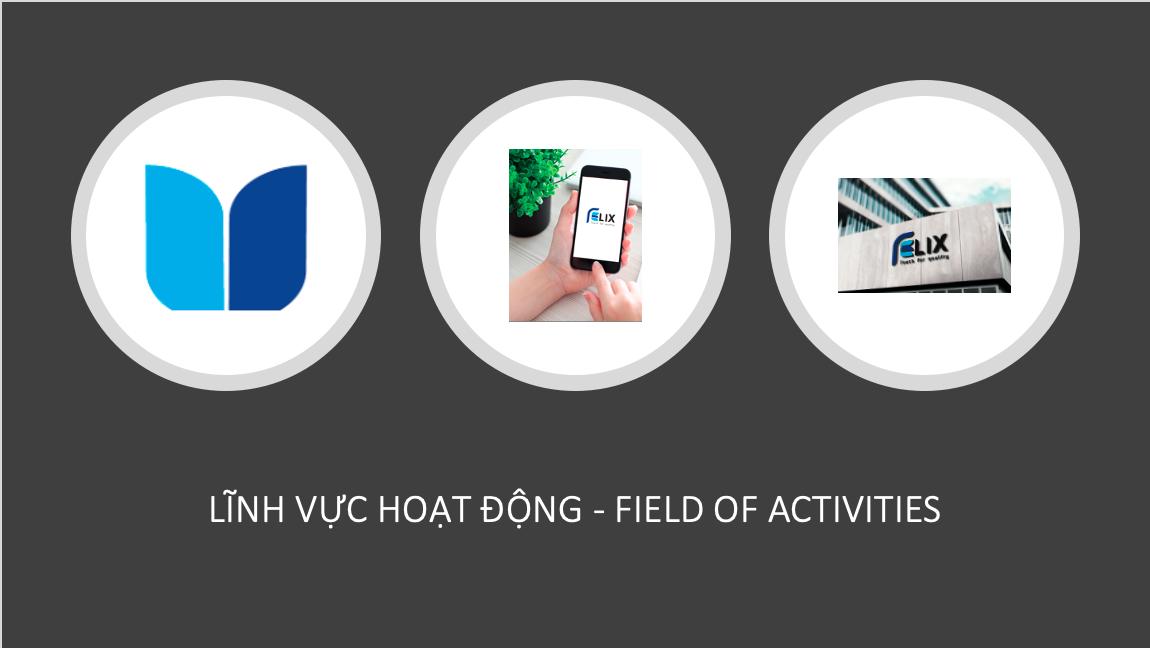 Lĩnh vực hoạt động – Field of Activities